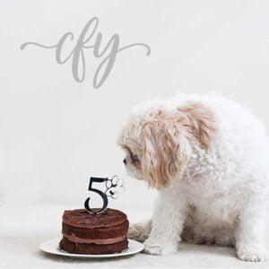 Pawsome Furbaby Pet Dog Cat 5th Birthday Cake Topper Acrylic Black